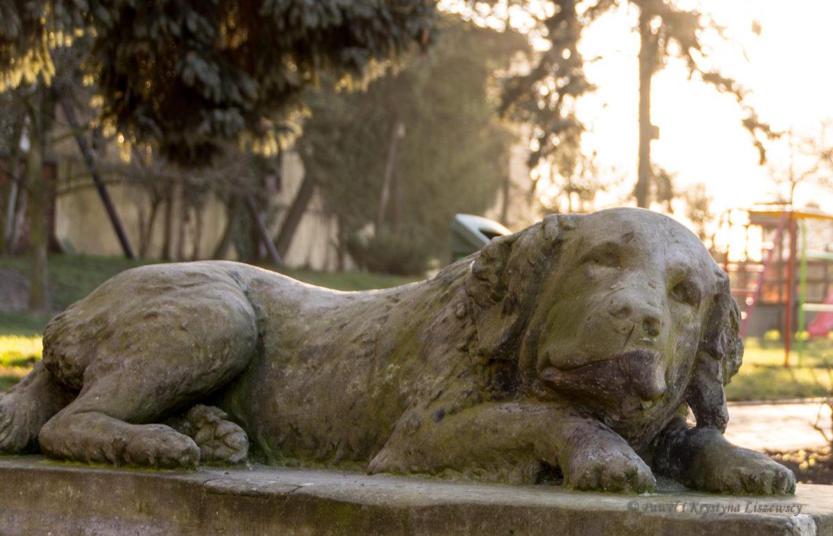 Kamienny pies Pawła Krzyżanowskiego od lat opiekuje się dziećmi z Przedszkola Niezapominajka na Warszawskiej