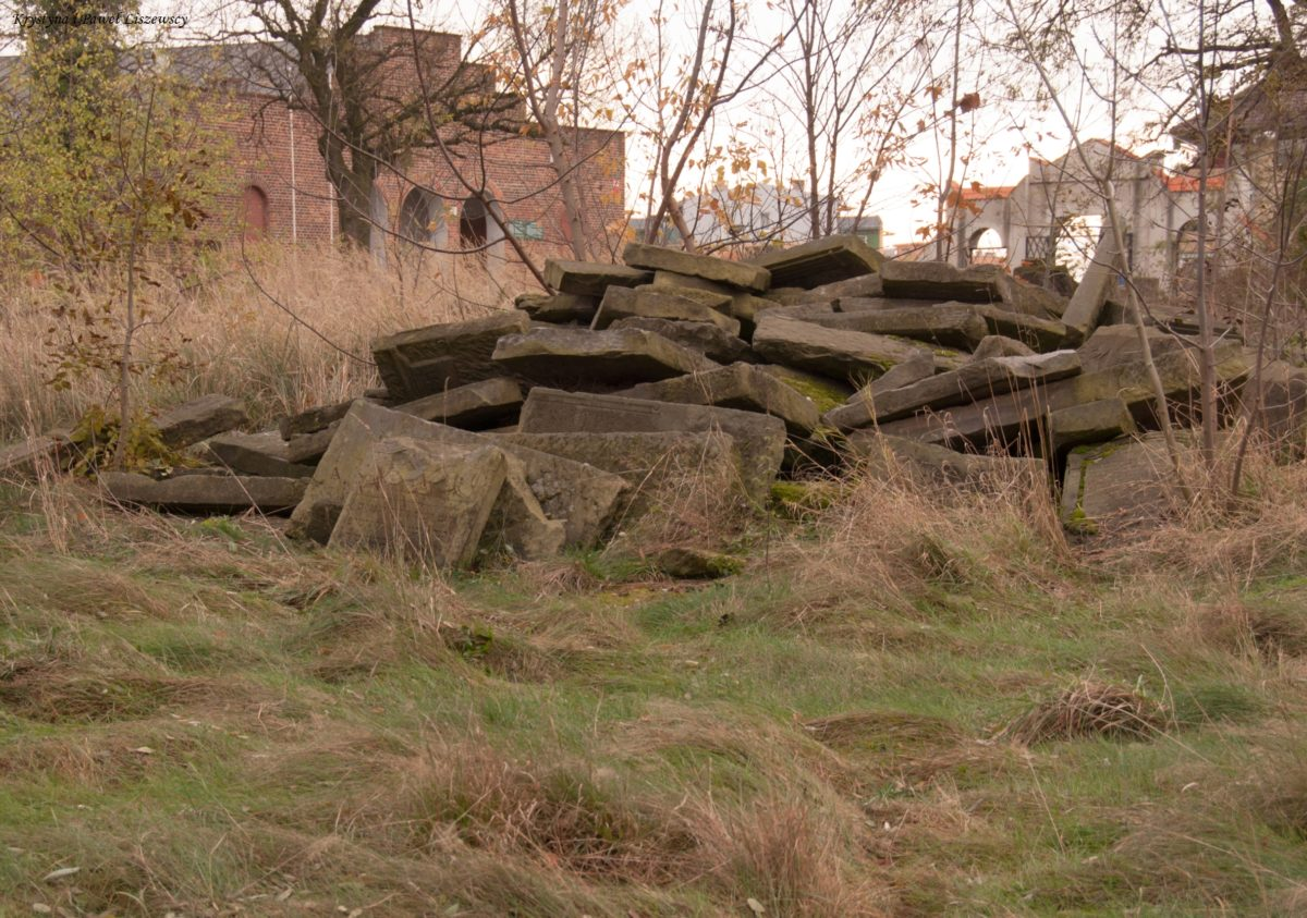 """Kaliscy Żydzi posiadali dwa cmentarze. Pierwszy założony w XIII wieku """"Na czaszkach"""", a drugi w XX wieku na Widoku"""