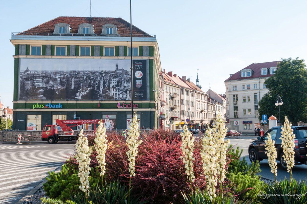 Wystawa Feniks 1914-2014 składała się z wielkoformatowych fotografii ukazujących katastrofę, jaką dla mieszkańców Kalisza było zburzenie miasta w sierpniu 1914 roku
