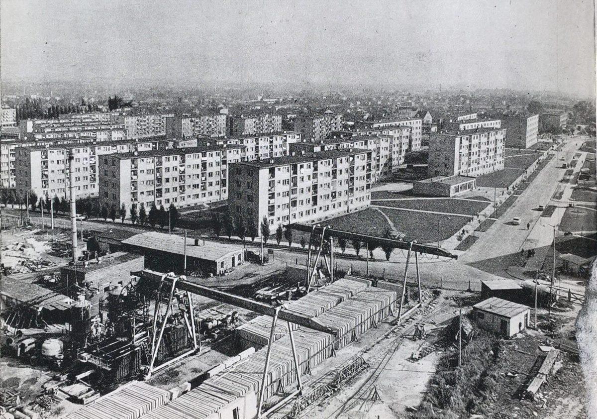 Fabryka domów – Przewodnik po starym Kaliszu