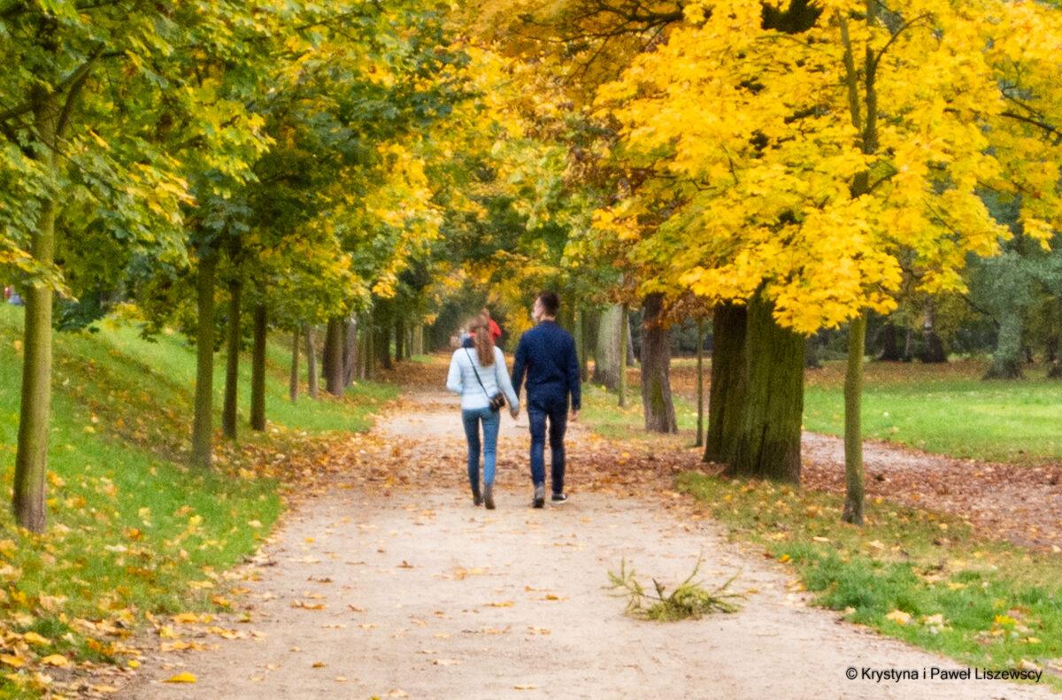 Barwy jesieni w najpiękniejszym Parku Miejskim – Przewodnik po Kaliszu